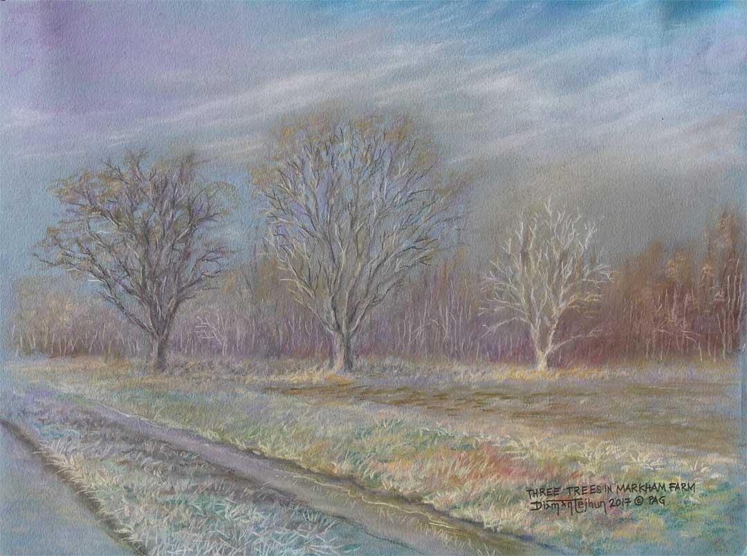 Three trees in Markham Farm - Jhun Ciolo Diamante