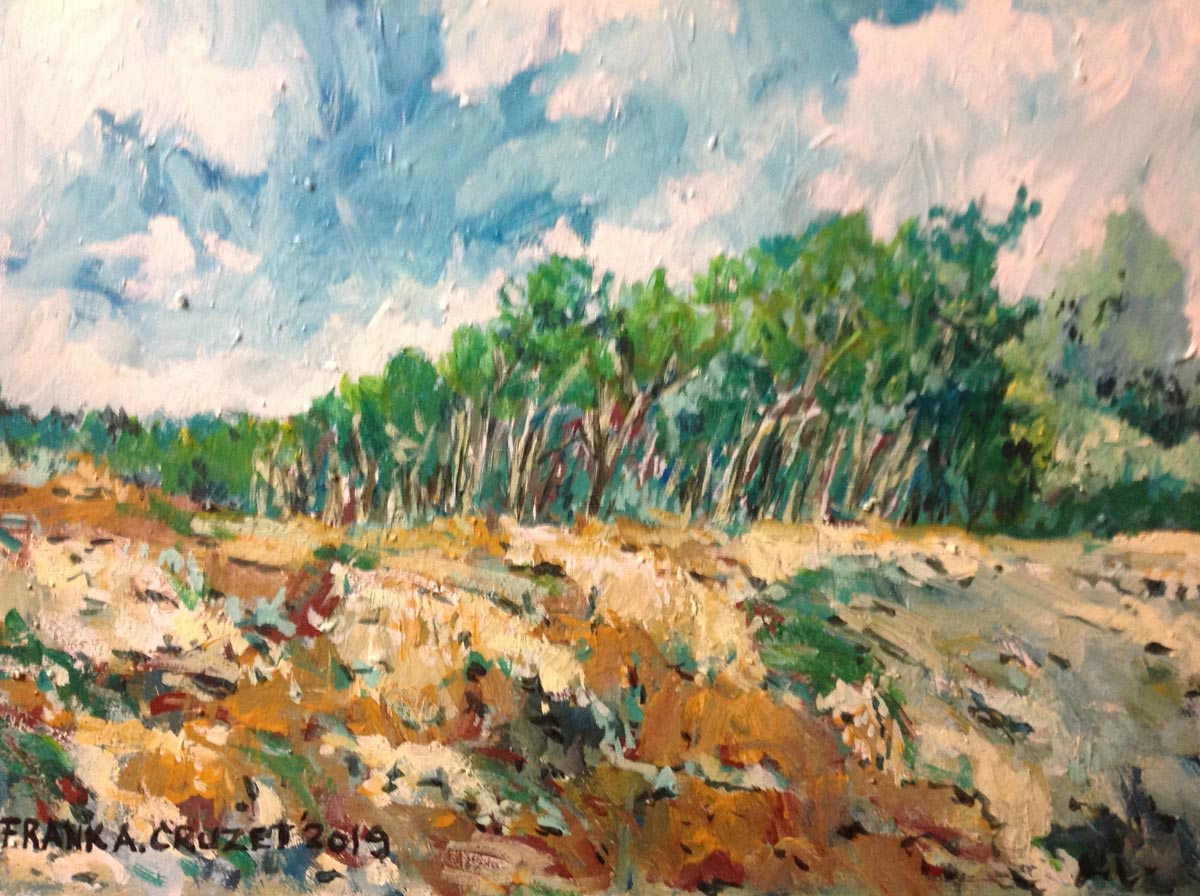 Frank Cruzet - Farmland in Pickering, ON; 12x18; acrylic on board